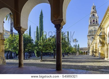Minaret Mosque Cordoba Spain view from inside the Patio de los Naranjos poster