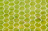 White frozen chicken wire against a green grass background. poster