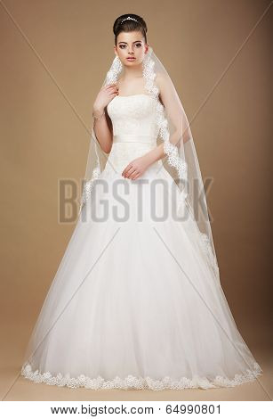 Wedding. Beautiful Graceful Bride In White Long Dress And Viel