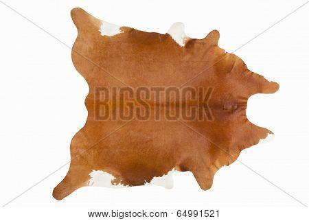 Furry Russet Pelage As A Rug