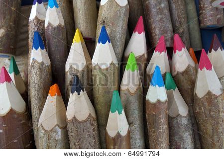 Pencils From Forest.