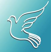 white dove with straightened wing on blue background poster