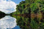 Amazonas landscape. The photo present Amazon river Brazil poster