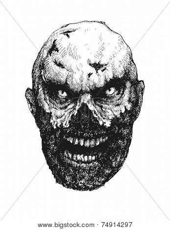Zombie. Hand drawn. Vector illustration