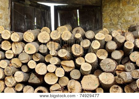 Woodpile. Background and Texture for text or image poster