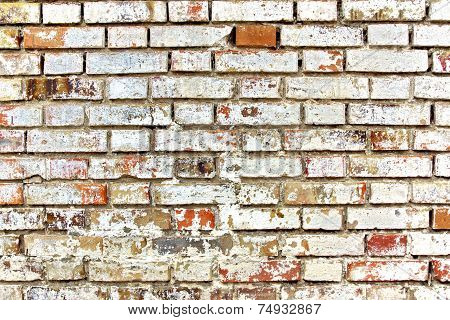 Shabby Colorful Brick Wall. Background and Texture for text or image. poster