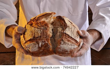 Cook holding fresh bread. Baker holding a fresh bread taken out of the oven.