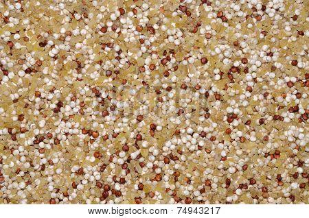 Quinoa seeds and Bulgar wheat.