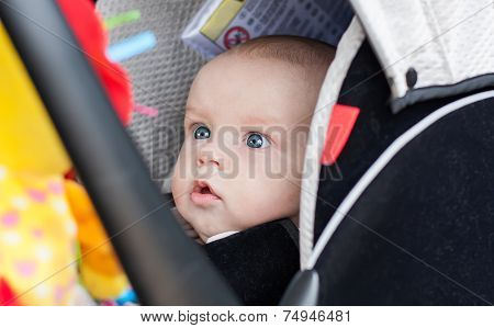 Baby Boy In Car Seat Stares