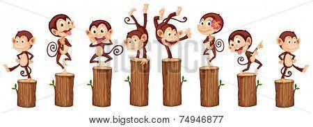 illustration of many monkeys on the log