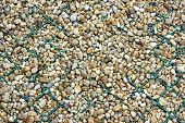 Foot Path Fragment made from Mesh and Pebbles. Background and Texture for text or image. poster