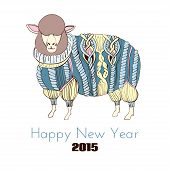 Sheep in knitted sweater, color hand drawn illustration poster