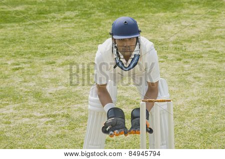 Cricket wicketkeeper behind stumps