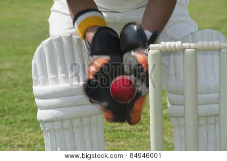 Wicket keeper standing behind stumps and catching a ball poster
