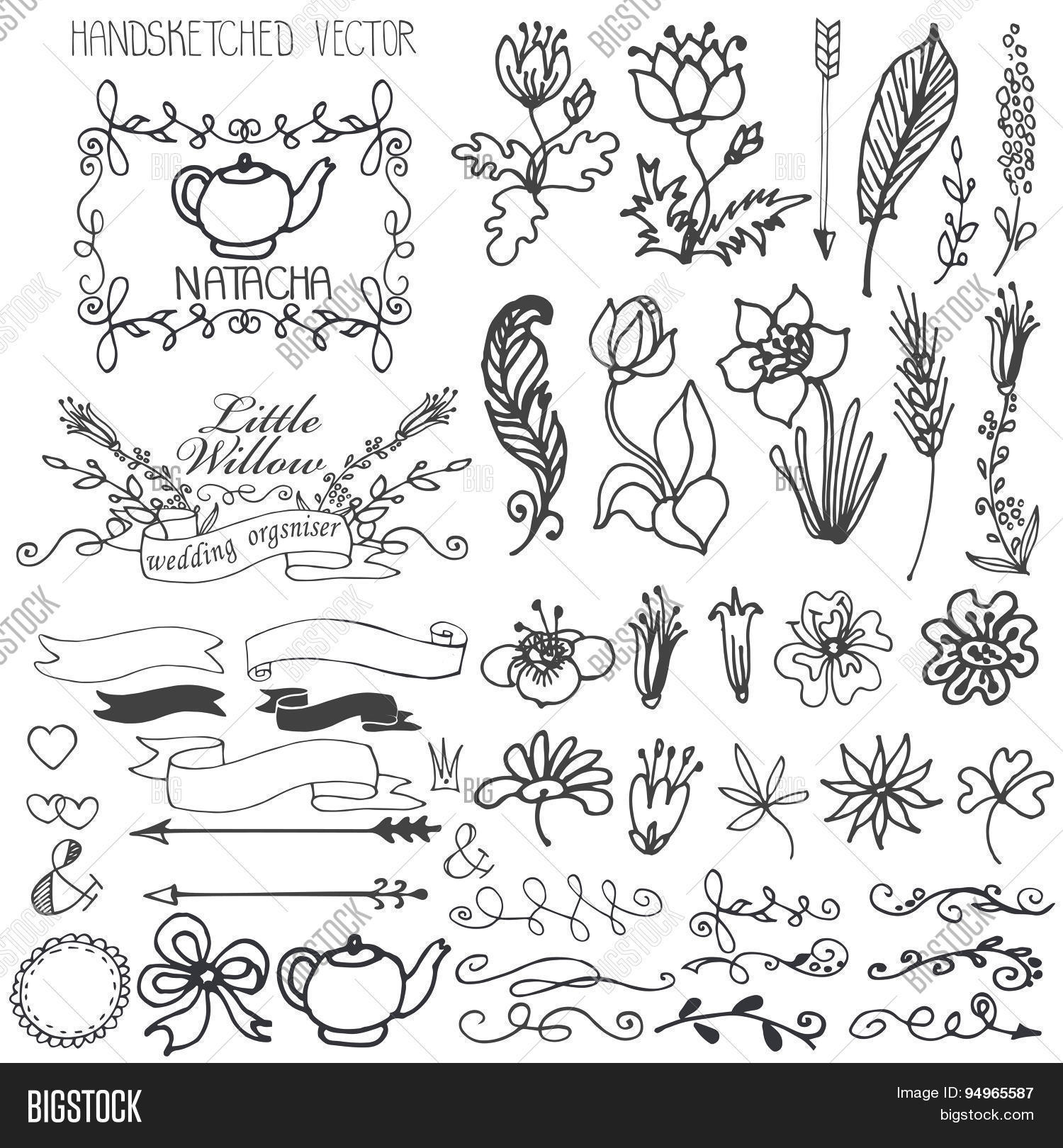 Doodles Flowers Brunshes Swirl Border And Arrows Ribbons With Decor Elements Set For Hand Scetced Logo Design Templates Invitations Logtype Vector