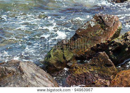 Sea Wave Hits Rocks