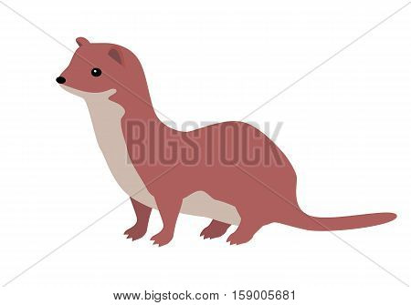Ermine flat style vector. Wild predatory animal. Middle, high latitudes fauna species. Weasel or sable cartoon on white background. For nature concept, children s book illustrating, printing materials