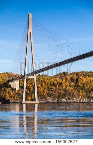 Automotive Cable-stayed Bridge In Norway