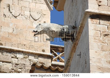 Gargoyle in the cathedral of Palma de Mallorca, Spain