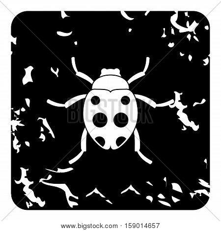 Bug icon. Grunge illustration of bug vector icon for web