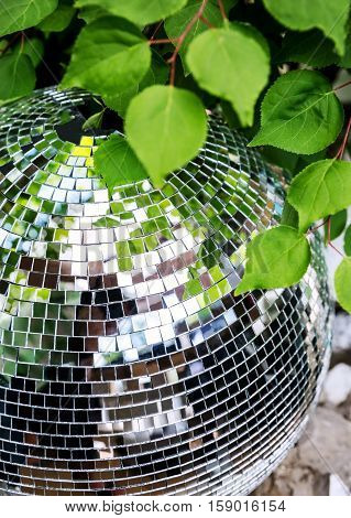 Mirror Disco ball close up on a background of green leaves in the club