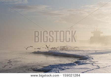 Beautiful winter lanscape with flying birds and bulker loading wood.