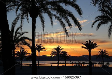Beautiful sunset on the beach Balearic Islands Mallorca (Majorca) Spain