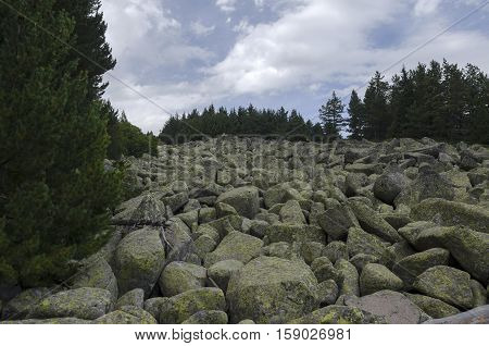 Unique stone river with big granite stones or moraine in the Vitosha National Park Mountain , Bulgaria