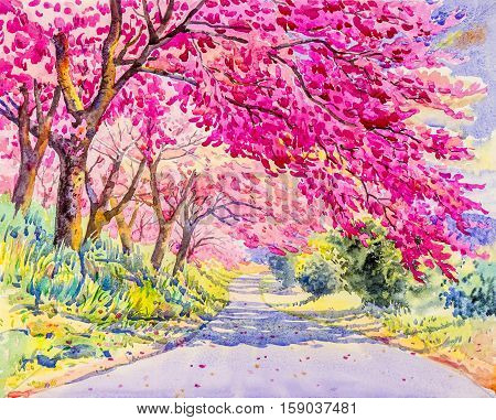 Watercolor landscape original painting pink color of wild himalayan cherry flower and emotion in cloud background
