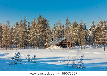 North Winter forest Landscape after blizzard with small wooden house, big trees covered snow, beautiful winter weather, Finland, Europe
