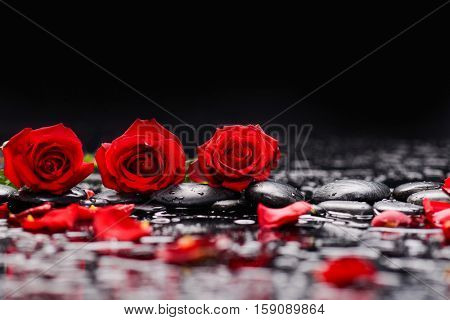 Still life with Red rose and therapy stones