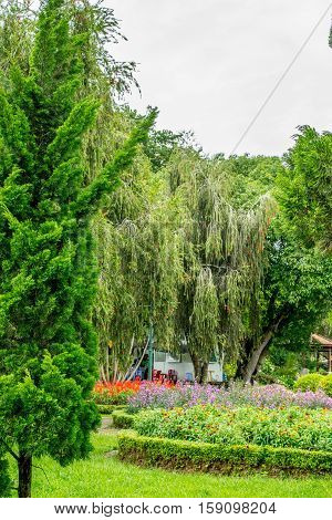 Trees and flowerbeds in park of flowers at Dalat Vietnam