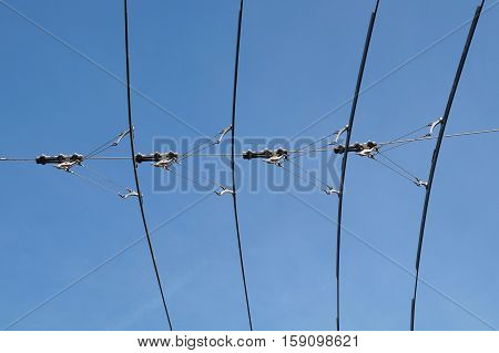 electric lines necessary for the movement of trolley buses. Photo close-up on a background of blue sky