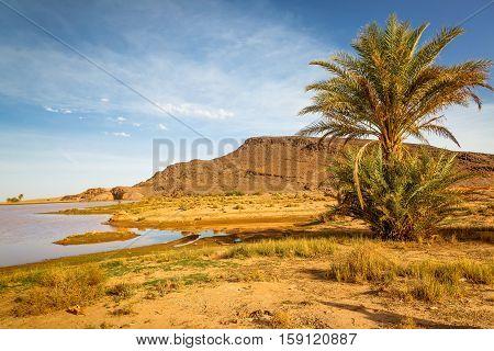 Landscape Near The City Ouarzazate