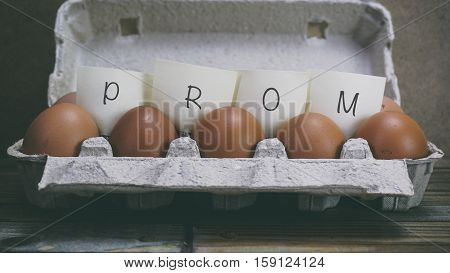 Chicken Egg In A Box, Words On Paper