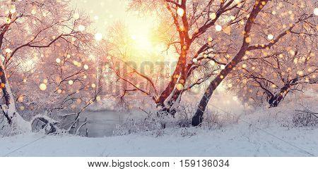Sunny Christmas morning. Sun illuminate snowflakes. Snowfall at xmas morning. Frosty winter backdrop