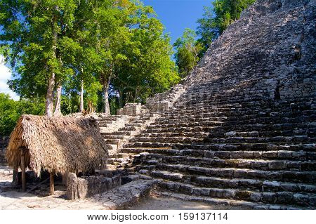Mayan temple in a jungle in Mexico