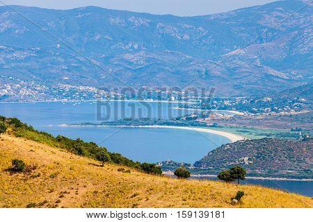 Summer Coastal Landscape Of French Island
