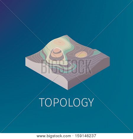 Vector topology isometric icon for web and print