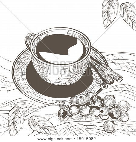 Cup of coffee with cinnamon and berry. Autumn background. Vector illustration engraved sketch style. Old engraving Hand drawn technique