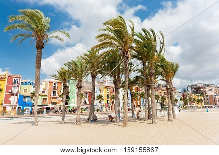La Vila Joiosa, Spain - September 1, 2016; Wind fans palms on beach under which beach users shelter in shade with multi-colored homes of La Vila Joiosa Costa Blanca Spain.