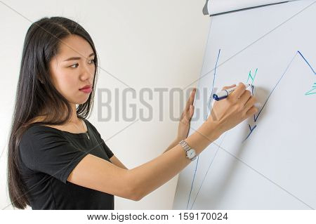 Young Woman Writing On A Flipchart