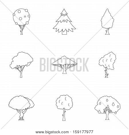 Woody plants icons set. Outline illustration of 9 woody plants vector icons for web