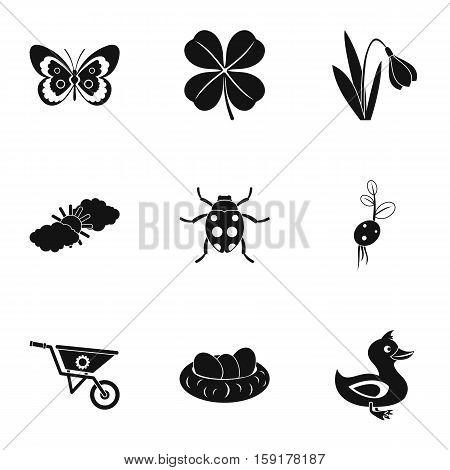 Kaleyard icons set. Simple illustration of 9 kaleyard vector icons for web