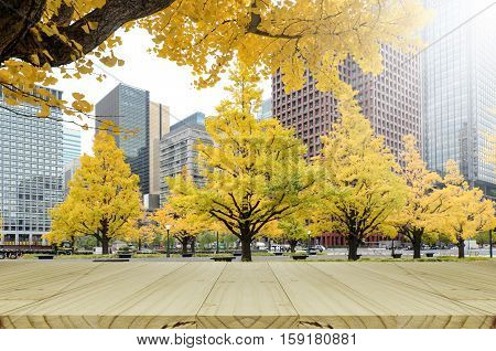 Picnic Table In The Park With Yellow Ginko Leaves In Autumn.