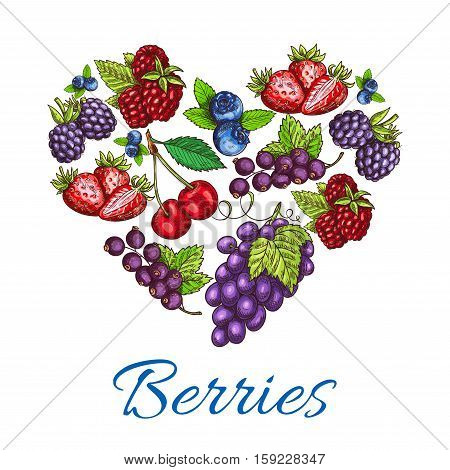 Berries heart shape. Vector poster of sketch berries and fruits with grape bunch, strawberry and raspberry, blueberry, blackberry, cherry and blackcurrant. Organic food of forest and farm berries for jam, juice