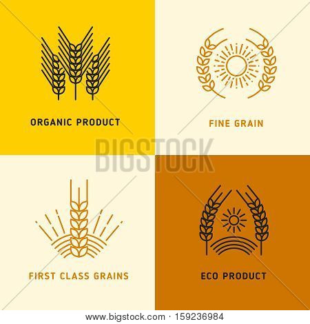 Harvesting vector logos with wheat grains. Logo with fine grain first class illustration