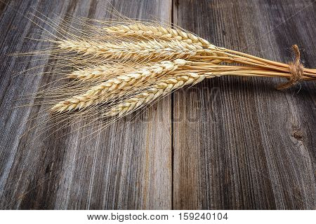 Sheaf of wheat ears on the wooden background.