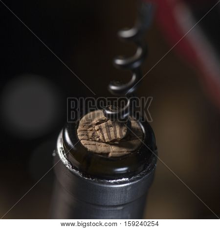 Opening A Wine Bottle With Corkscrew, White Background