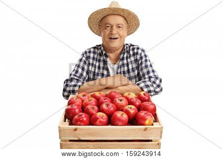 Cheerful mature farmer behind a crate filled with apples isolated on white background